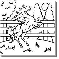 Obraz, Koń + Farby, 30x30 cm