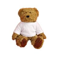 Maskotka Miś Teddy, Twój projekt Teddy