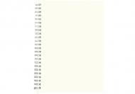 Notes Pusty szablon krata, 15x21 cm