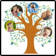 Plakat, Drzewo Rodzinne, 30x30 cm