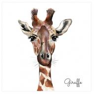 Plakat, Giraffe, 30x30 cm