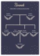 Plakat, Drzewo genealogiczne, 30x40 cm