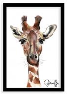 Plakat w ramce, Giraffe - czarna ramka, 20x30 cm