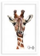 Plakat w ramce, Giraffe - biała ramka, 20x30 cm