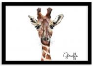 Plakat w ramce, Giraffe - czarna ramka, 30x20 cm