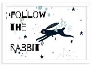 Plakat w ramce, Rabbit- biała ramka, 30x20 cm