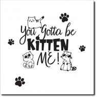 Obraz, Kitten me, 30x30 cm