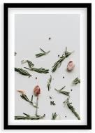 Plakat w ramce, Czosnek - czarna ramka, 20x30 cm