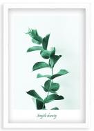 Plakat w ramce, Listki - biała ramka, 20x30 cm