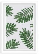 Plakat w ramce, Liście paproci - biała ramka, 20x30 cm