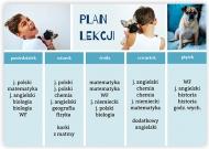 Plakat, Plan lekcji - niebieski, 40x30 cm