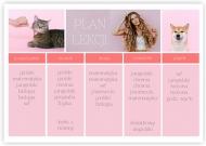 Plakat, Plan lekcji - różowy, 40x30 cm