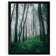Plakat w ramce, Las, 30x40 cm