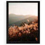 Plakat w ramce, Trawy, 30x40 cm