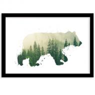 Plakat w ramce, Niedźwiedź , 40x30 cm