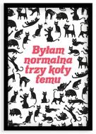 Plakat w ramce, Kolekcja Typowy Kot - Byłam normalna 3 koty temu, 20x30 cm