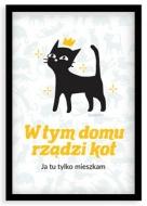Plakat w ramce, Kolekcja Typowy Kot - W tym domu rządzi kot, 20x30 cm