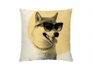 Poszewka, bawełna ekologiczna, Pies w okularach, 38x38 cm