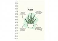 Notes Kolekcja Długopisem Malowane - Aloes Zwyczajny - kropki, 15x21 cm