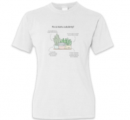 Koszulka damska, Kolekcja Długopisem Malowane - Sukulenty