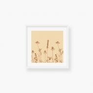 Plakat w ramce, Pure Nature - Field - Biała Ramka, 35x35  cm