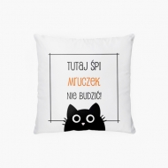 Poduszka, bawełna, Nie budzić - Czarny Kot, 38x38 cm