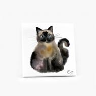 Obraz, Cat, 30x30 cm