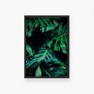 Plakat w ramce, Monstera liście - czarna ramka, 20x30 cm